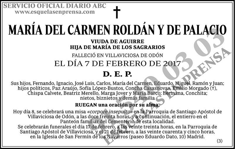 María del Carmen Roldán y de Palacio